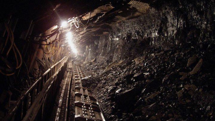 W jaki sposób powstają złoża węgla kamiennego?