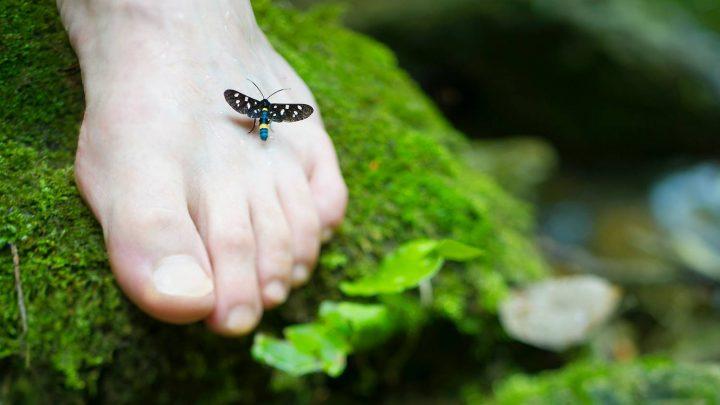 Onycholiza paznokci – na czym polega i jak zwalczać?